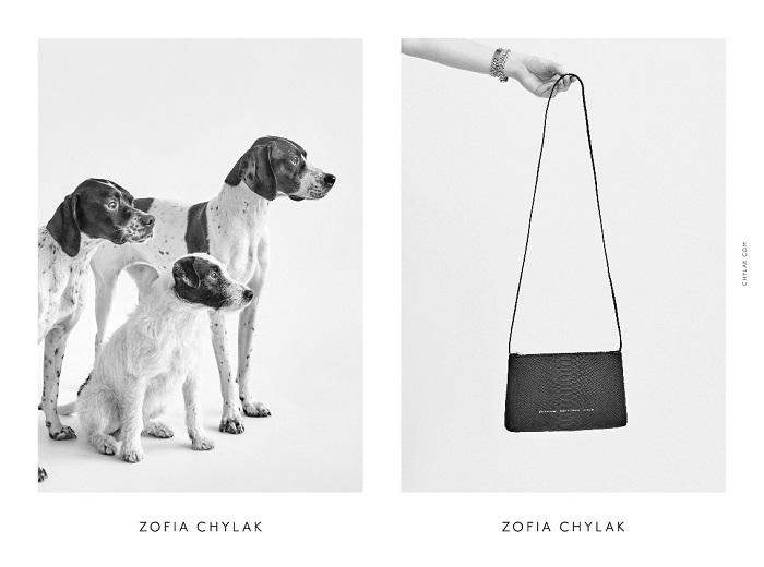 chylak-dogs-2016-press-04