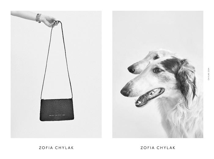 chylak-dogs-2016-press-10