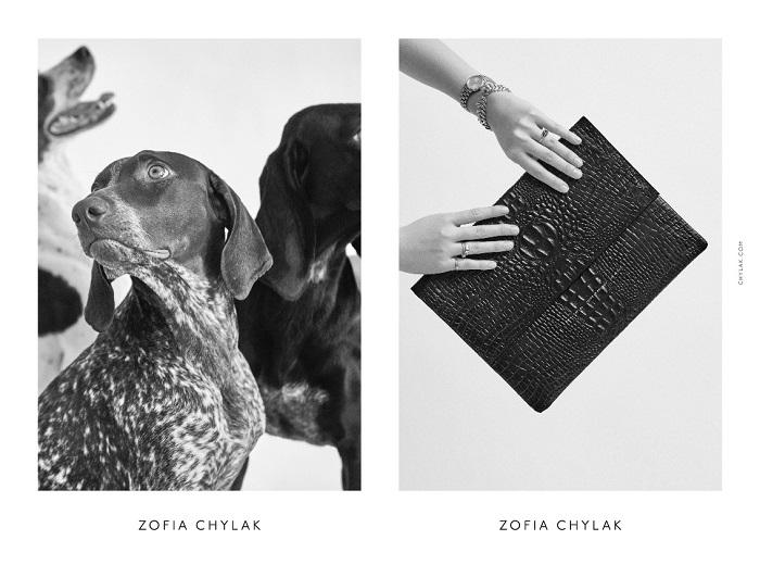chylak-dogs-2016-press-12